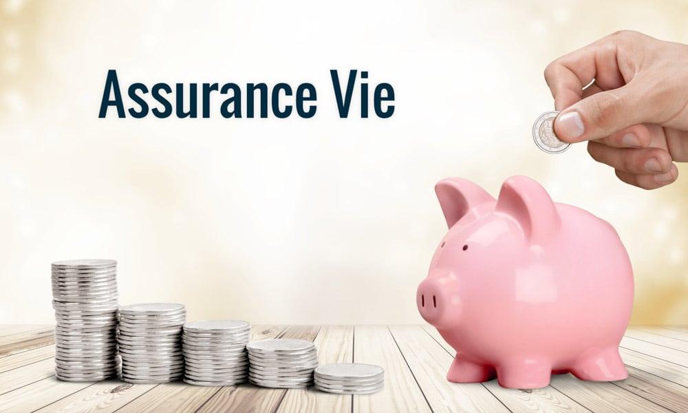 Quelle Assurance Vie Choisir Pour 2019