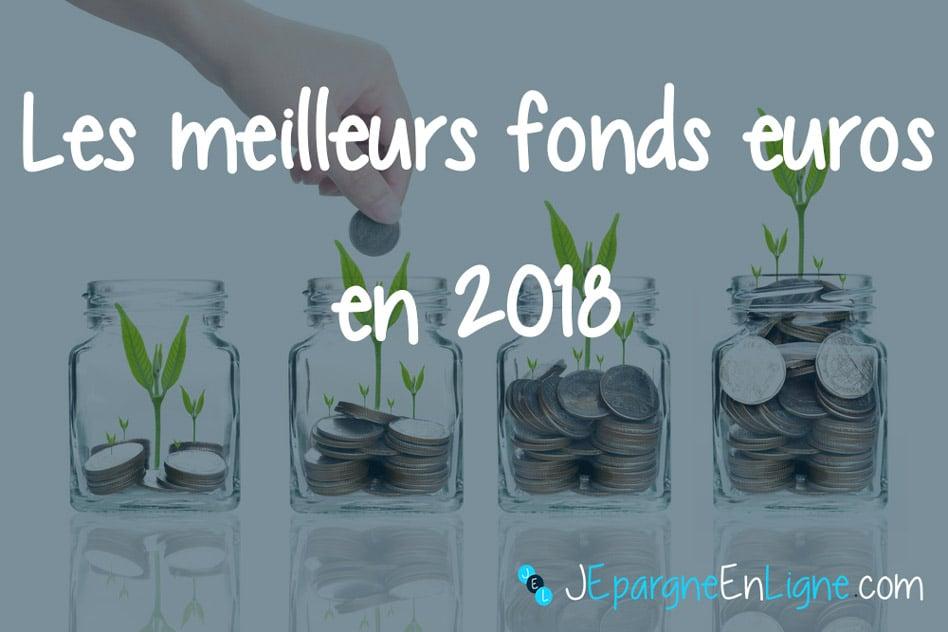 Assurance Vie 2018 Les Meilleurs Fonds Euros
